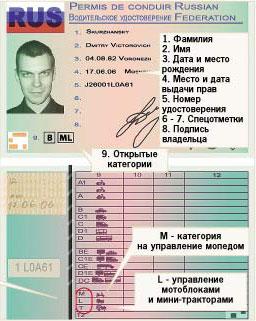 Ришайон неига  водительские права Израиля  Ole Hadash